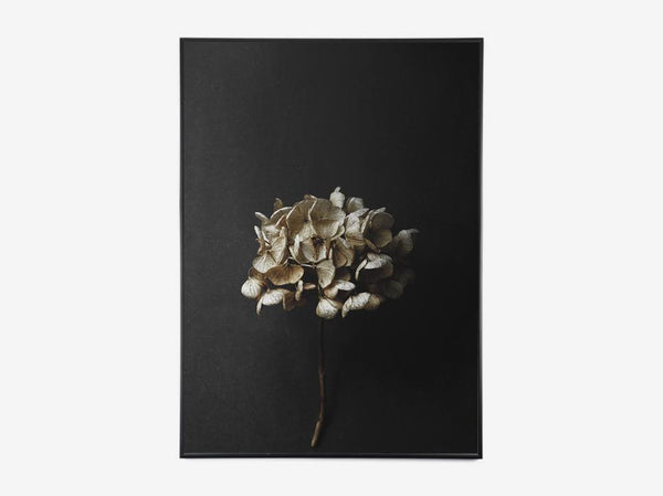 Paper Collective - Still Life 04