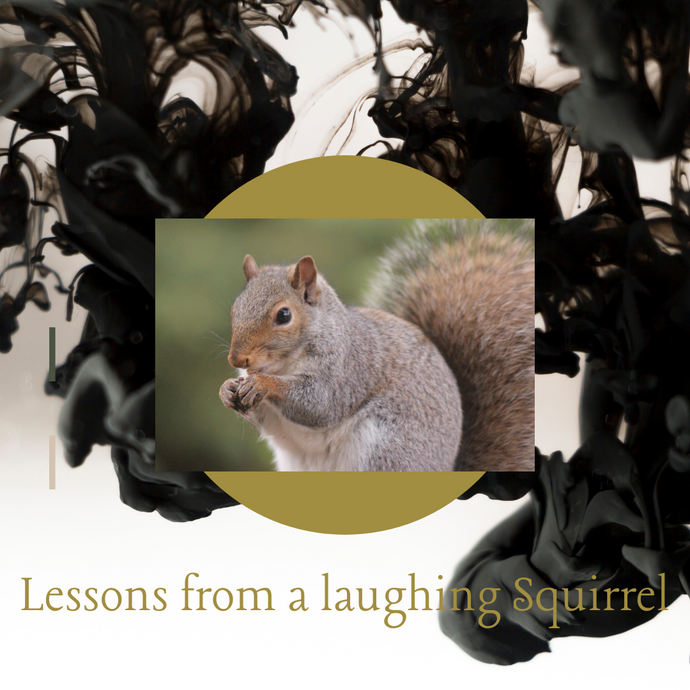 Squirrelly Wisdom