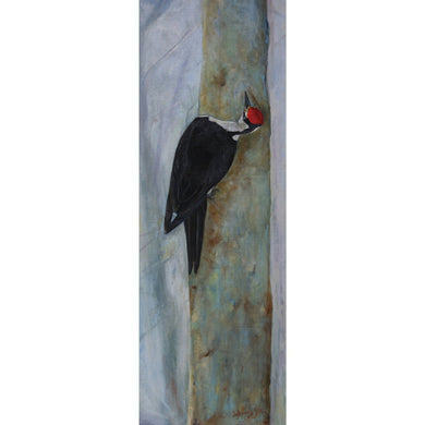 Pileated Woodpecker Giclee on Canvas - Daydreams Studio