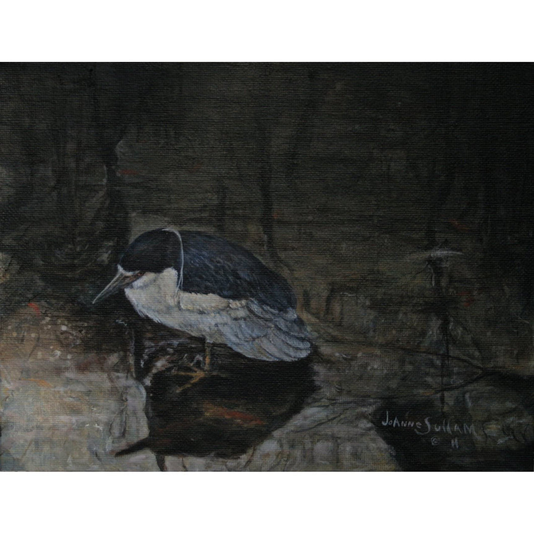 Night-Heron Giclee on Canvas - Daydreams Studio