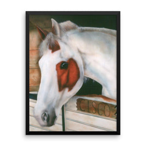 Cisco Framed Poster Print - Daydreams Studio