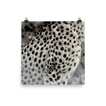 Cheetah spots Poster print - Daydreams Studio
