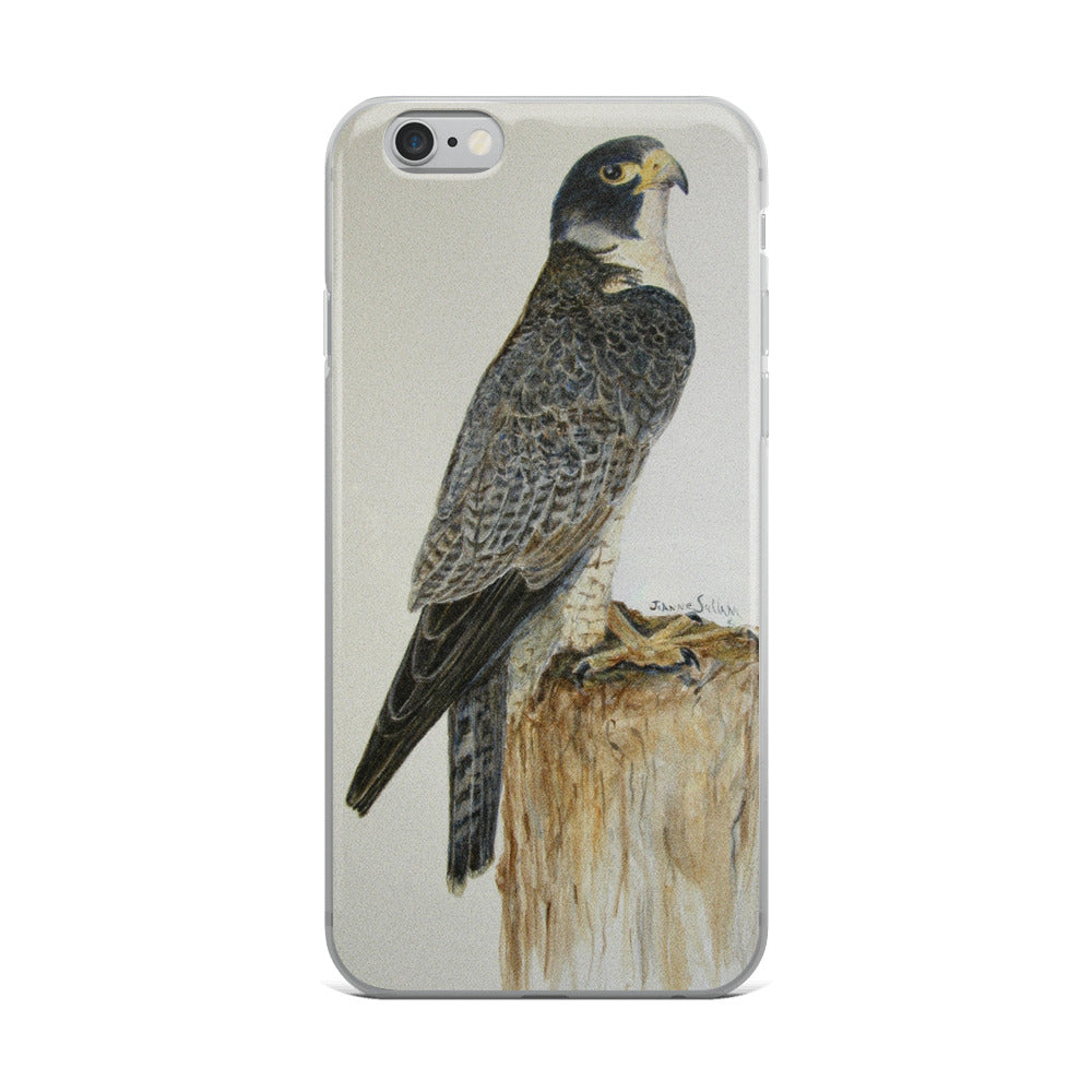 Peregrine Falcon standing proud iPhone 5/5s/Se, 6/6s, 6/6s Plus Case - Daydreams Studio
