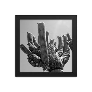 Hand of Cactus  Framed poster - Daydreams Studio