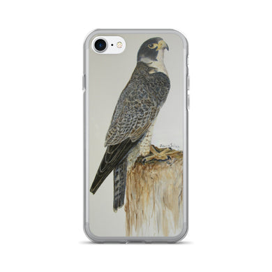 Peregrine Falcon standing proud iPhone 7/7 Plus Case - Daydreams Studio
