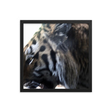 Tiger Thoughts Framed poster - Daydreams Studio
