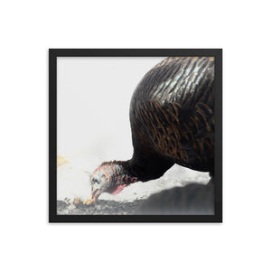 Turkey views Framed poster - Daydreams Studio