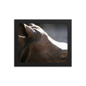 More to me Rhino Framed poster print - Daydreams Studio