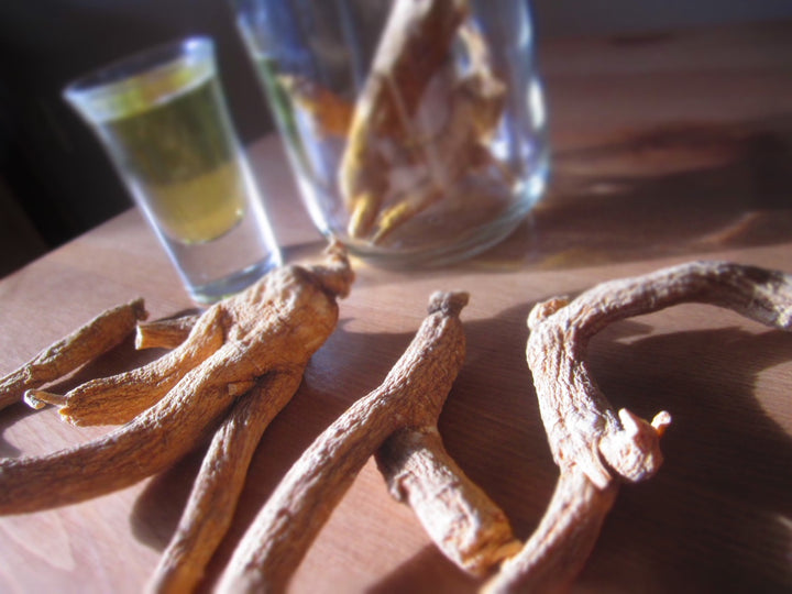 Adaptogens: A Deep Dive Into The Elite Herbs For Adrenal Energy - November 10th