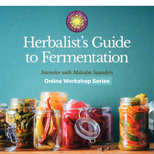 the Herbalists Guide to Fermentation with Malcolm Saunders