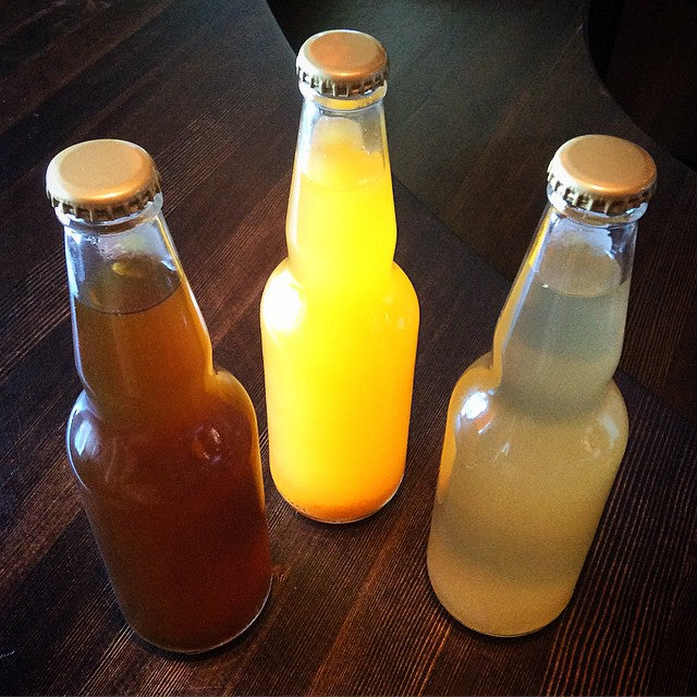 Be Your Own Soda Maker: Learn How to Make Kombucha & other Probiotic, Effervescent Sodas for Greater Digestion & Immunity