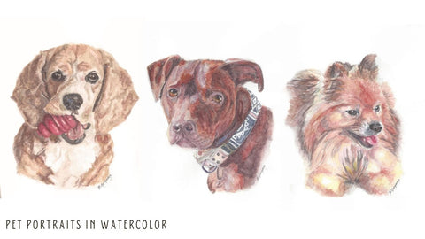 pet portraits in watercolor | Beverly Gurganus Fine Art
