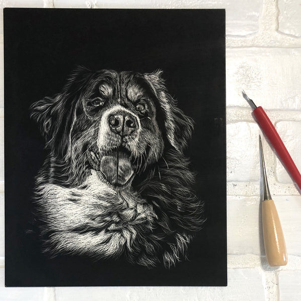 Pet Portrait in scratchboard | Beverly Gurganus fine art