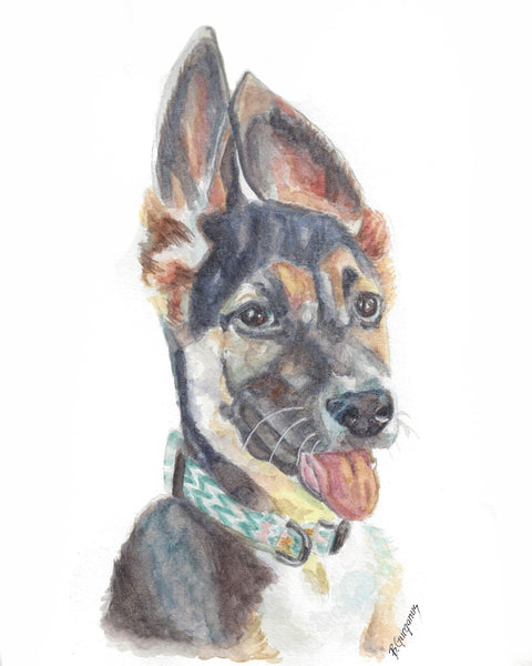 Foster | pet portrait in watercolor | Beverly Gurganus Fine Art