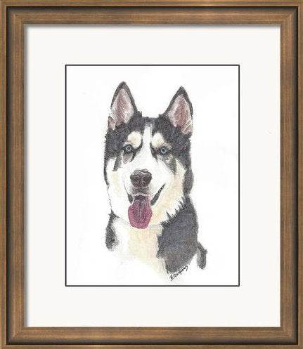 Jack | pet portrait in watercolor | Beverly Gurganus Fine Art