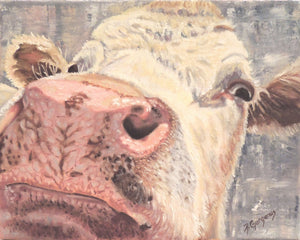 Nosy Cow | original cow painting | Beverly Gurganus Fine Art