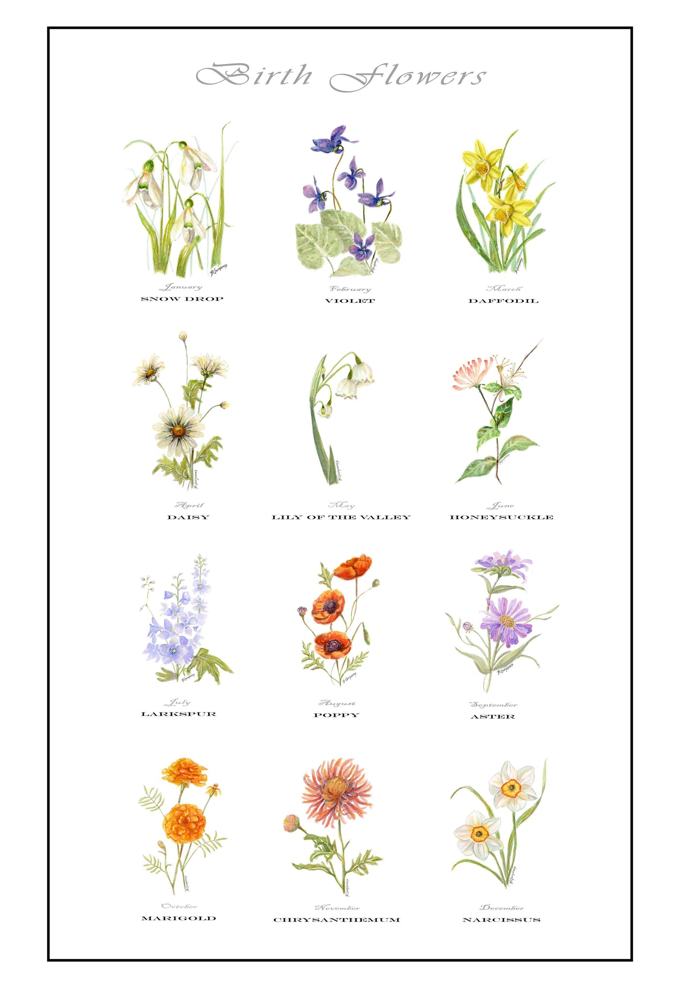A Year in Bloom | Birth Flowers art print | Beverly Gurganus Fine Art
