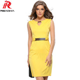 Sleeveless  Knee Length Pencill Office Dress