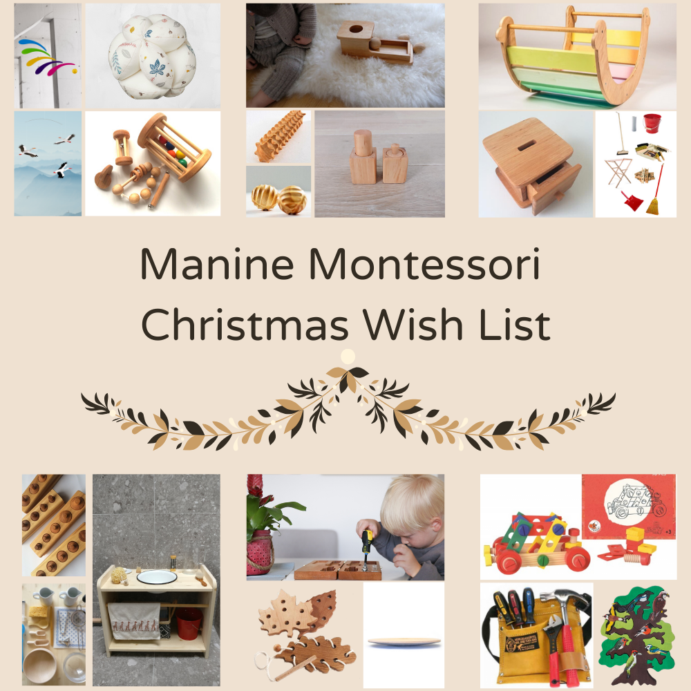 For your inspiration: The Manine Montessori Christmas Wish List