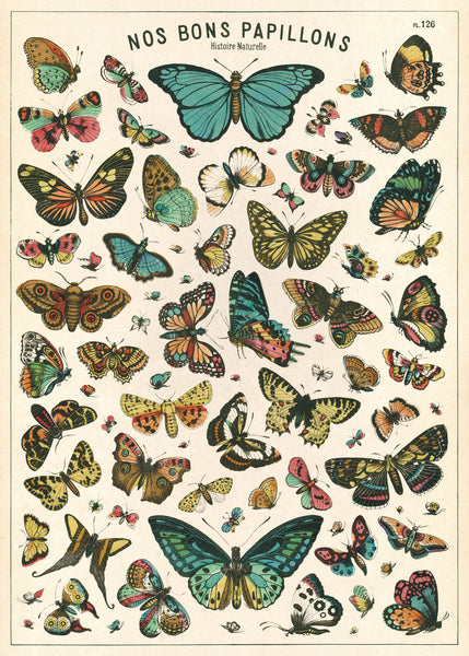 Vintage Poster Butterflies