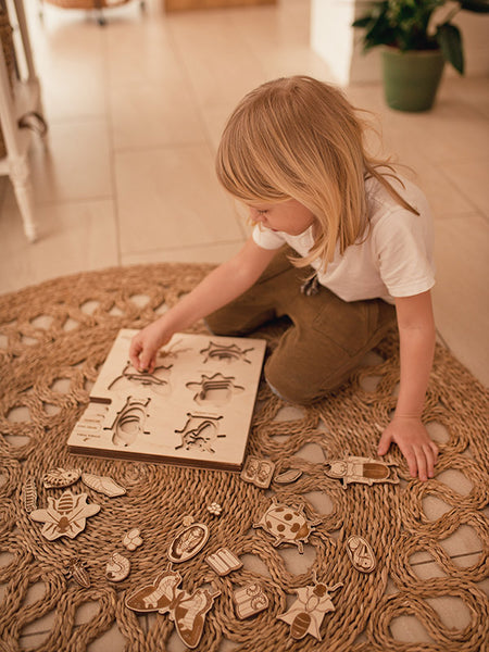 """A bug's life"" multi-layer Montessori puzzle"