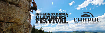 Crickets at the 23rd International Climber's Festival