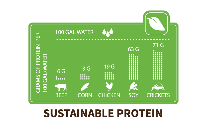 Chapul Why Eat Crickets: Sustainable Protein Chart