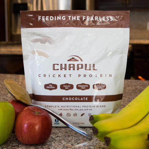 Chapul Cricket Flour Protein Powder | Chocolate | 1lb bag