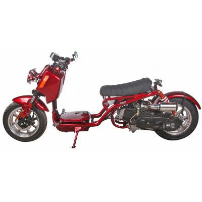 Maddog 50cc Scooter Metallic Burgundy