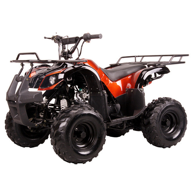 Coolster 3050D ATV 110cc