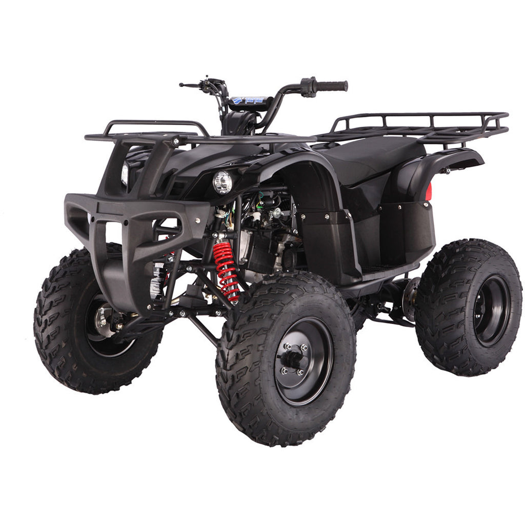 TAOTAO Bull ATV Full Size Black