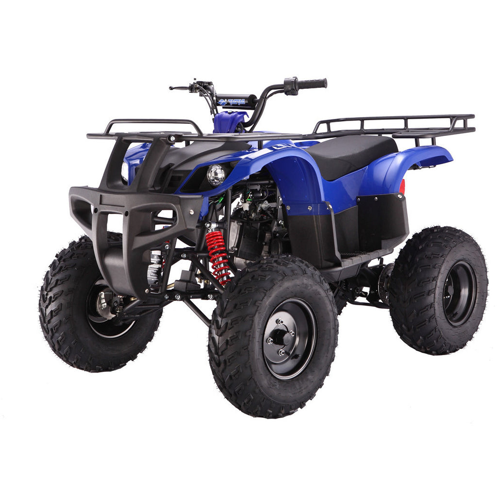 TAOTAO Bull ATV Full Size Blue