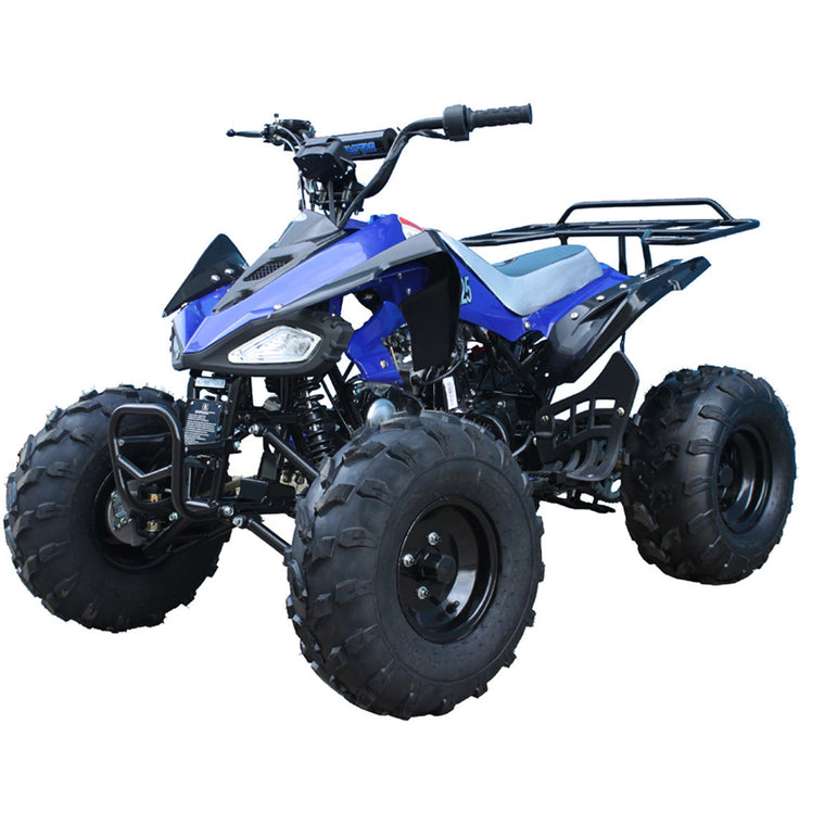 TAOTAO Cheetah 125 ATV Youth Blue