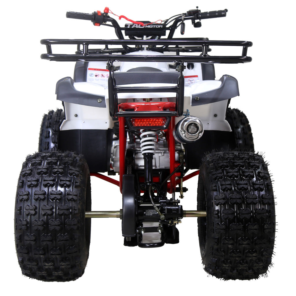TAOTAO TForce Youth ATV - LIMITED VERSION