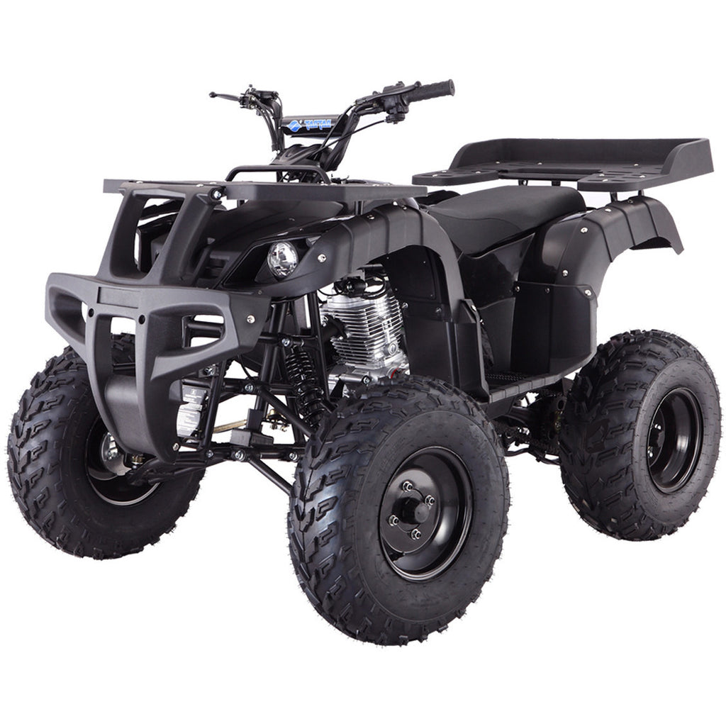 TAOTAO Rhino 250 ATV Black