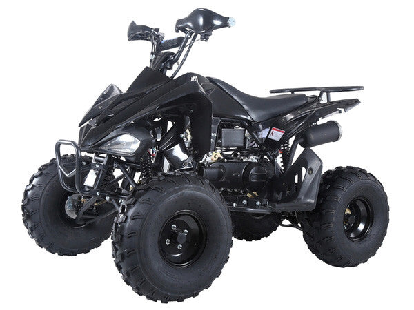 TAOTAO 150G ATV Black