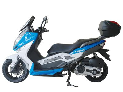 Ice Bear 300-T9 300cc Scooter