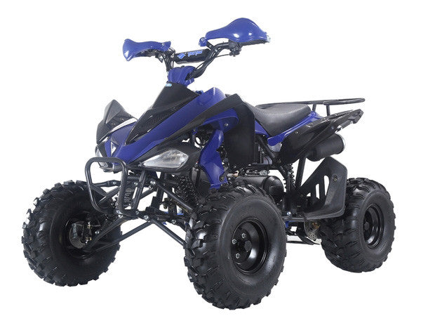 TAOTAO 150G ATV Blue