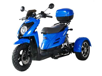 Ice Bear Shark 50cc Trike