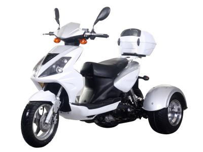 Ice Bear Mojo 50cc Trike