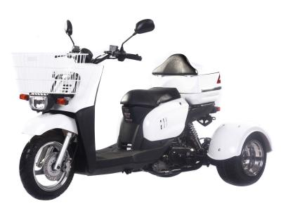 Ice Bear Mini Cruzzer 50cc Trike
