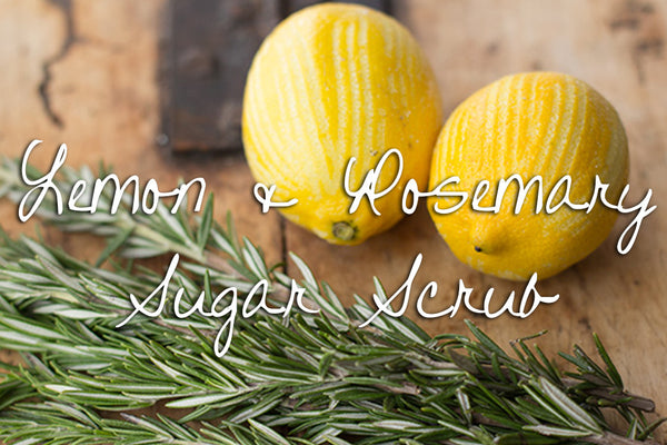 Sugar Scrub - Lemon & Rosemary Detox