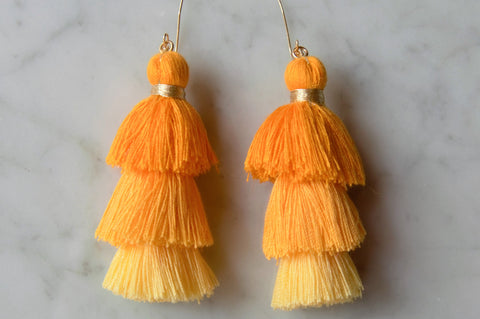 Tassel Ombre Earrings
