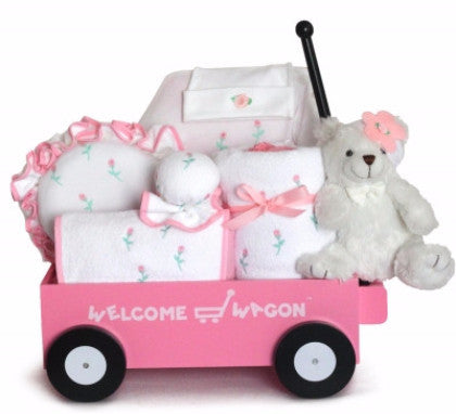 Deluxe Baby Girl Welcome Wagon