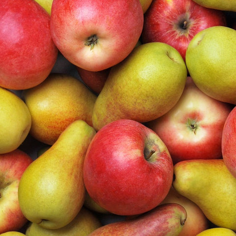 Winter Mixed Box Jackson Orchards - New Zealand Orchard