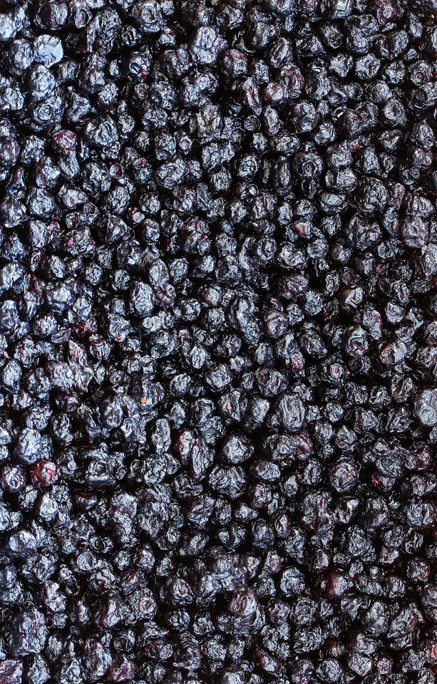 Dried Blueberries Jackson Orchards - New Zealand Orchard