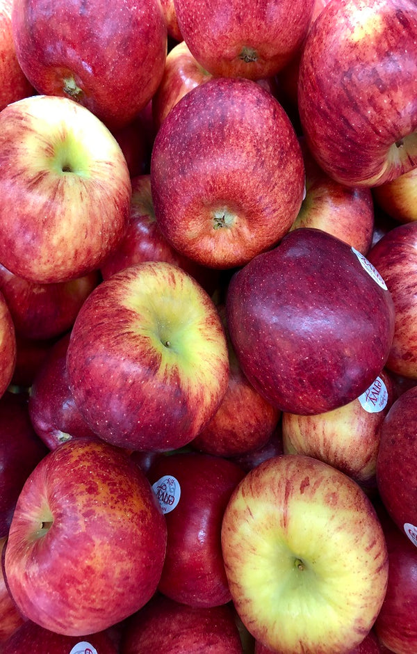 Envy Apples Jackson Orchards - New Zealand Orchard