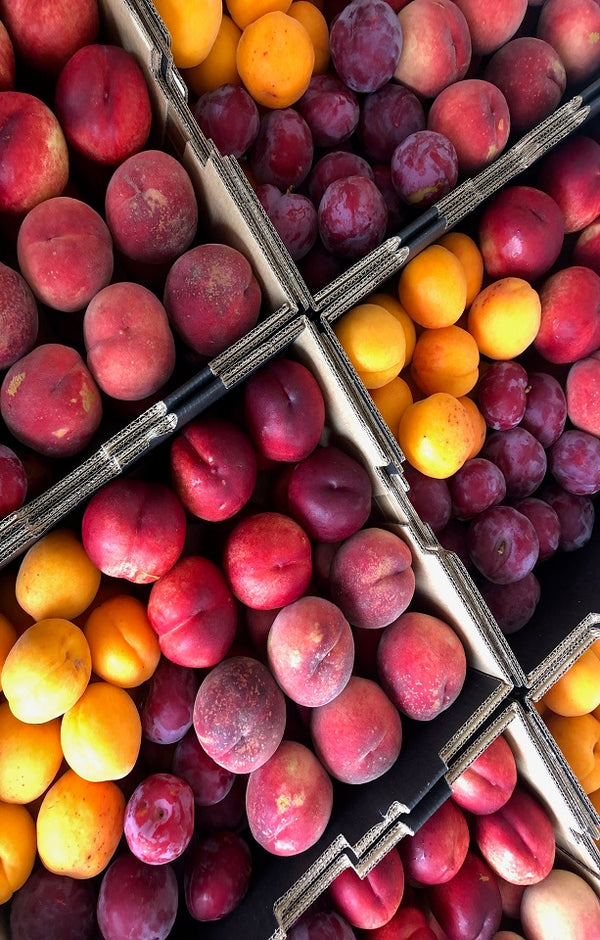 Summer Mixed Box Jackson Orchards - New Zealand Orchard