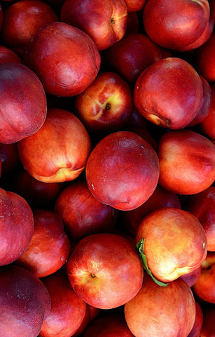 Nectarines Jackson Orchards - New Zealand Orchard