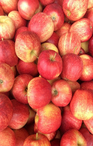 Royal Gala Apples Jackson Orchards - New Zealand Orchard